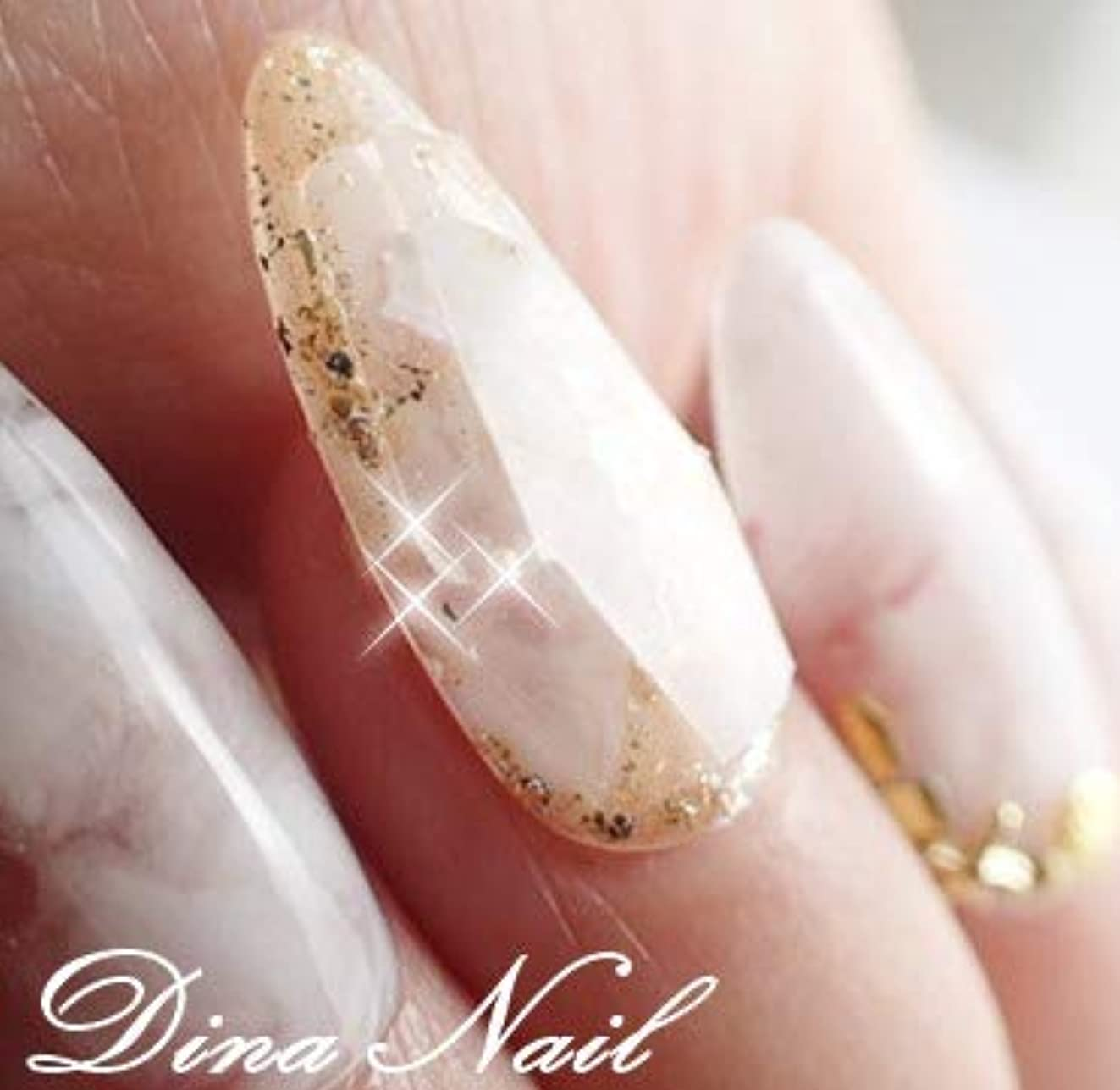 大きい立証する目の前のDINAネイル 白マーブル宝石ネイル スキニーオーバルL(03247番)ネイルチップ