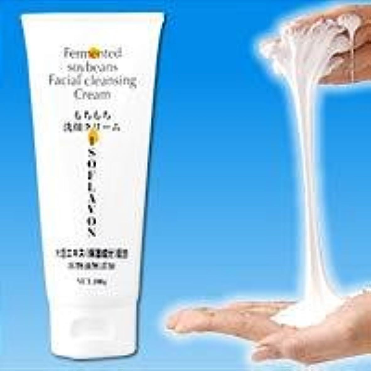 買う同意値するもちもち洗顔クリーム