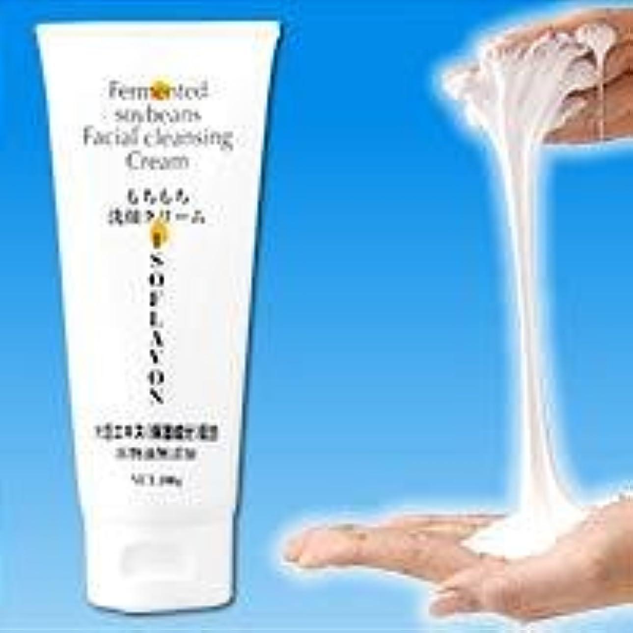 医療過誤遠近法退屈させるもちもち洗顔クリーム