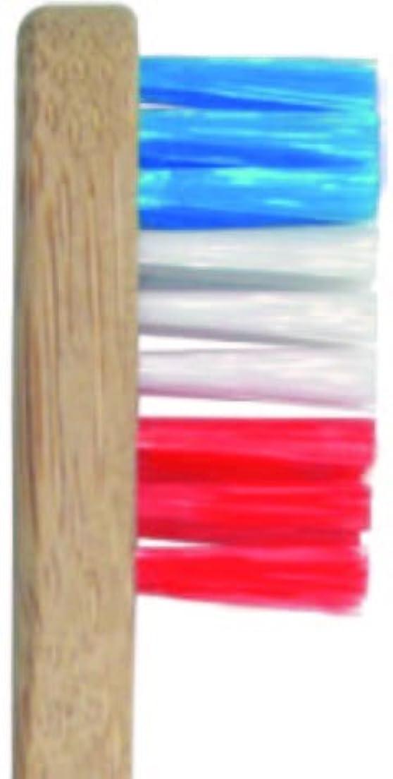 印刷する香ばしい展望台Plentz プレンツ 竹ハブラシ (ブルー)