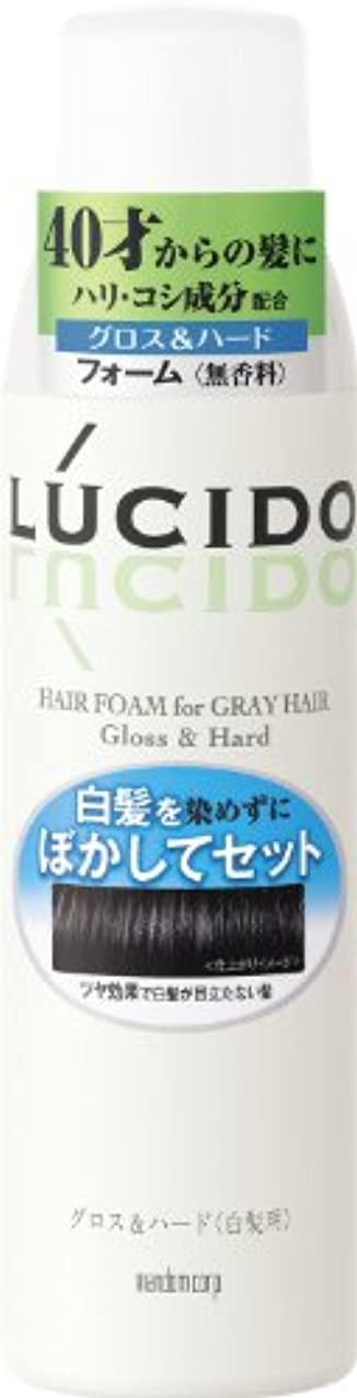 延ばす仮定過度のLUCIDO (ルシード) 白髪用整髪フォーム グロス&ハード 185g