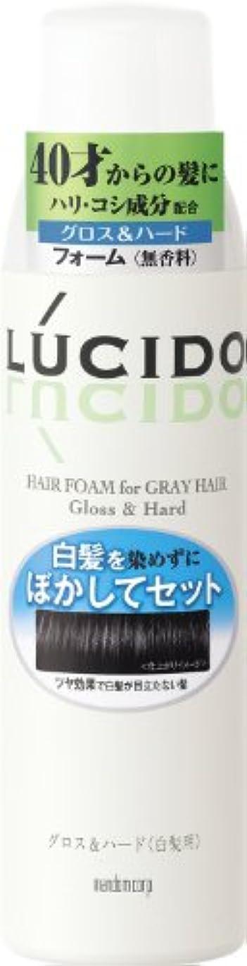 ペンス肩をすくめるポルティコLUCIDO (ルシード) 白髪用整髪フォーム グロス&ハード 185g