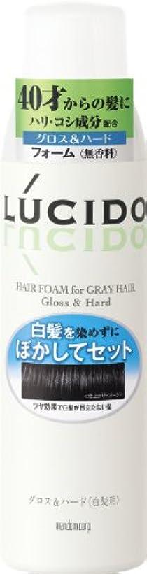 代表団宅配便文献LUCIDO (ルシード) 白髪用整髪フォーム グロス&ハード 185g