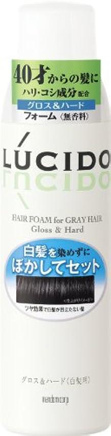 出します精神動的LUCIDO (ルシード) 白髪用整髪フォーム グロス&ハード 185g