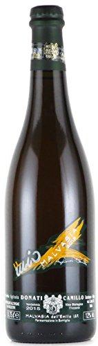 カミッロ・ドナーティ マルヴァジーア・フリッザンテ・セッコ 2015 微発泡 白ワイン 750ml 辛口