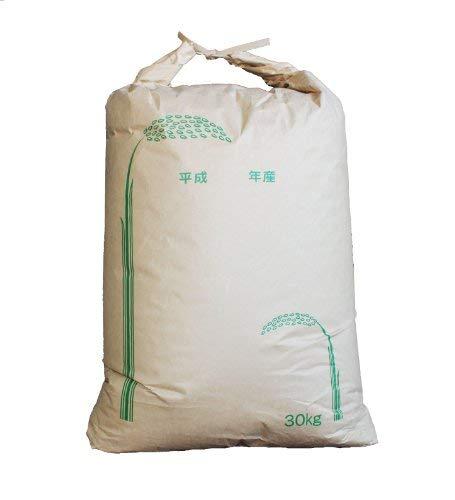 【新米 令和元年 静岡産きぬむすめ 玄米】自然豊かな山間で育った完全無農薬米 (30kg)