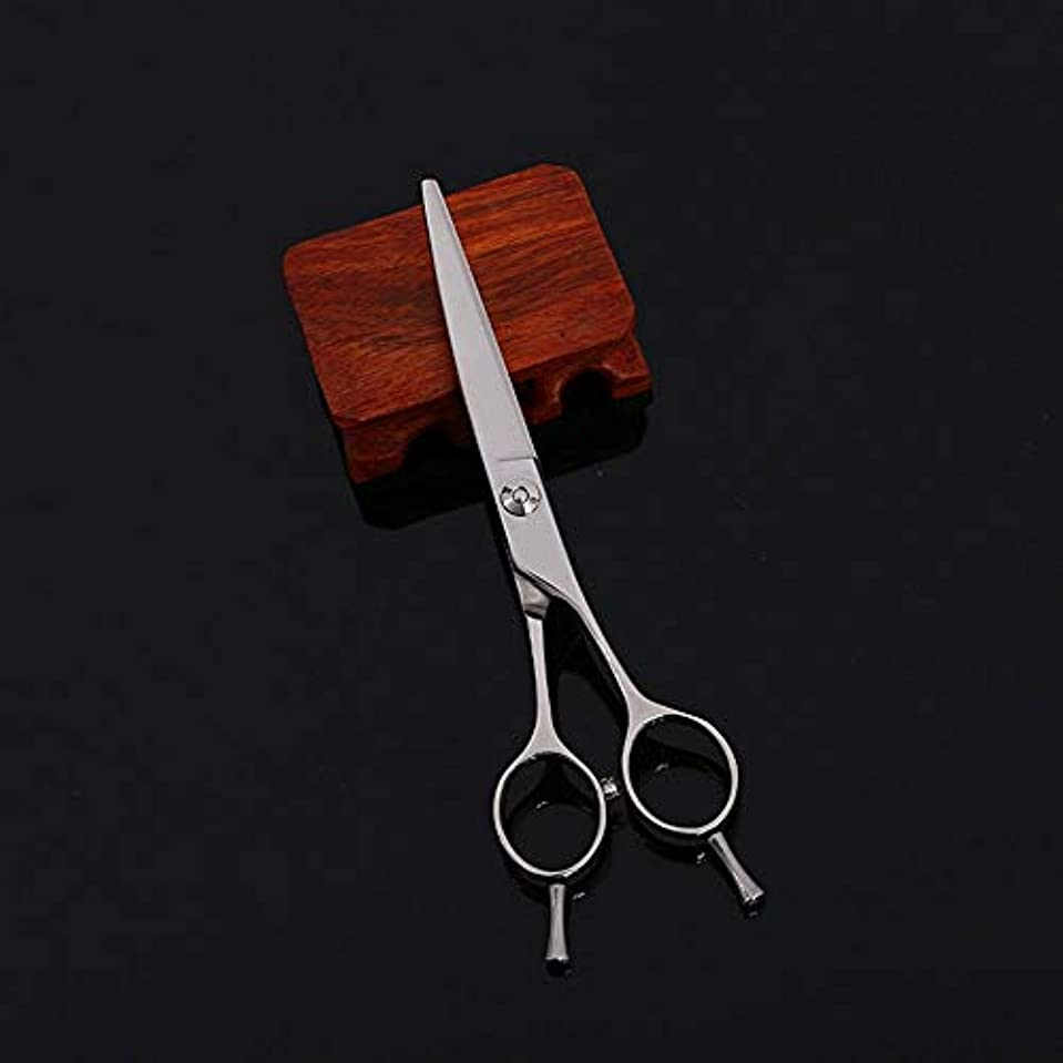 Goodsok-jp 6インチの美容院プロフェッショナル散髪肘はさみフラットせん断髪修理はさみ (色 : Silver)