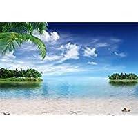 aofoto 7x 5ft Tropical Sand Beach andブルースカイ写真背景Seaside Backdrop Marine Seawater Holiday Island Kid Baby Boy Girl Artistic Portrait Photoshoot Studio Propsビデオドレープ壁紙