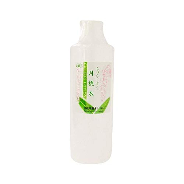 バッグステンレスアンビエントちゅらしずく 月桃水 300ml×10個 化粧水