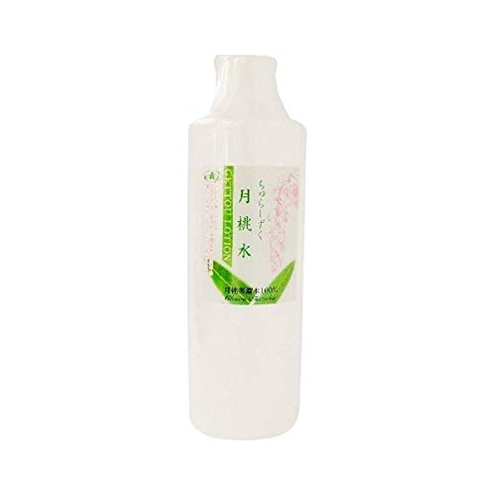 進行中樫の木短命ちゅらしずく 月桃水 300ml×10個 化粧水