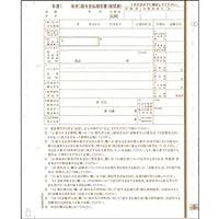 (まとめ)日本法令 地方MC-6給与支払報告書(総括表) 2枚複写 平成30年提出用(29年分) チホウMC-6-28 1箱(100セット) 【×2セット】 〈簡易梱包