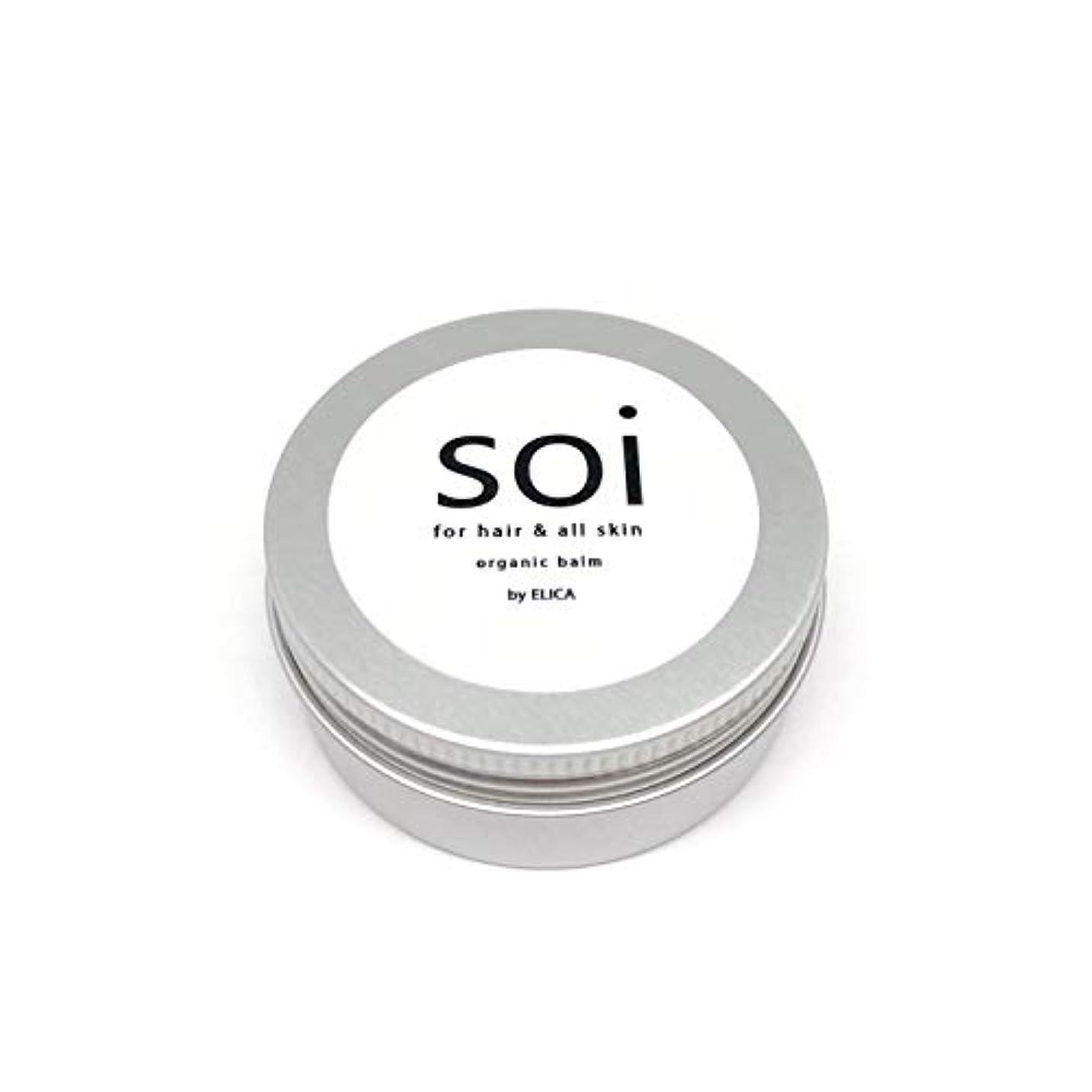 絶対に確保する保持するsoibalm/ソイバーム オーガニックワックス 【濡れ感×自然な束感】濡れ髪風仕上げにおすすめ