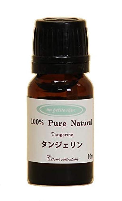 侵入正当な間欠タンジェリン  10ml 100%天然アロマエッセンシャルオイル(精油)
