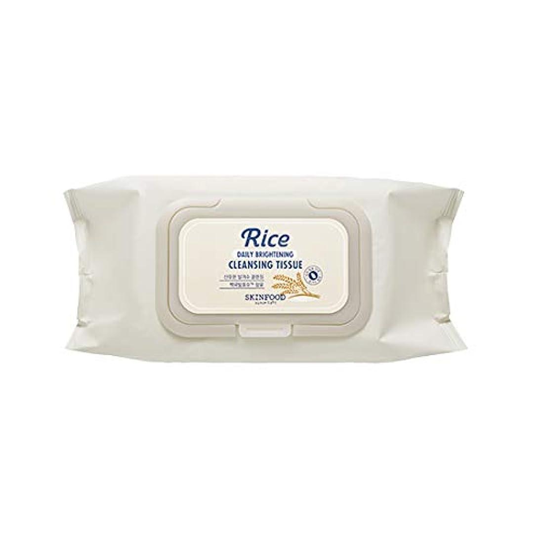 牽引飛行機周りSkinfood/Rice Daily Brightening Cleansing Tissue/ライスデイリーブライトニングクレンジングティッシュ/380ml [並行輸入品]