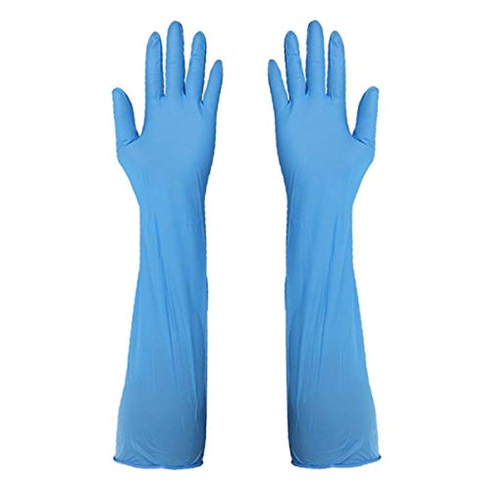 バックグラウンドタウポ湖共感するニトリルグローブ 使い捨て手袋 手袋を長くする グローブ パウダーフリー 作業 介護 調理 炊事 園芸 掃除用 10組,L