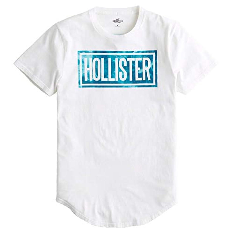 メドレー主婦子[ホリスター] メンズ Tシャツ (両面プリント) LOGO GRAPHIC TEE [並行輸入品]