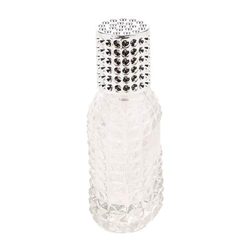 同化憂慮すべきぶら下がるSM SunniMix ガラス 香水瓶 空 スプレー香水ボトル 美しいパイナップルデザイン 詰め替え可能 全4種 - シルバー50ml