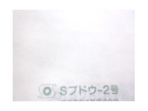 【3000枚】果実袋 ぶどう ブドウ 袋 H2号 巨峰 ピオーネなど 190×270 タ種代不