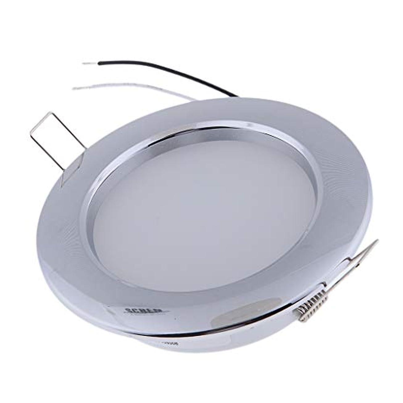 薬局襲撃結果としてF Fityle LEDドームライト LEDシーリングライト LEDパネルライト クローム製 低消費電力