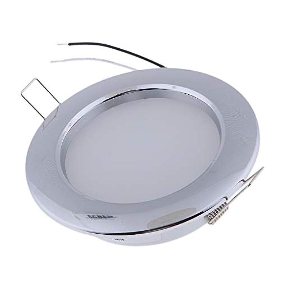 カウボーイブレンド鯨F Fityle LEDドームライト LEDシーリングライト LEDパネルライト クローム製 低消費電力