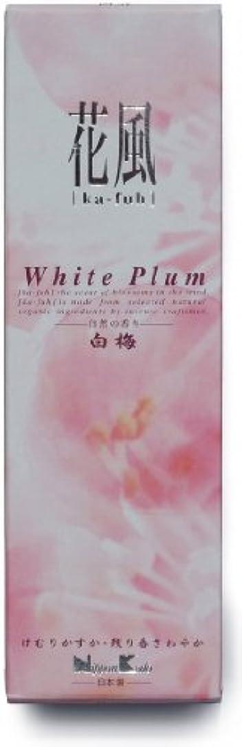 の前で不従順防腐剤花風 白梅 小バラ詰