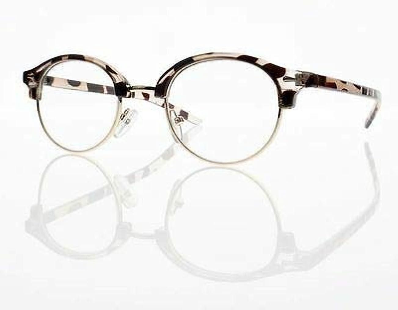 FidgetGear 新しいユニセックスレトロラウンドフレームクリアレンズ老眼鏡+1.0 + 2.0 + 3.0 + 4.0 ヒョウ
