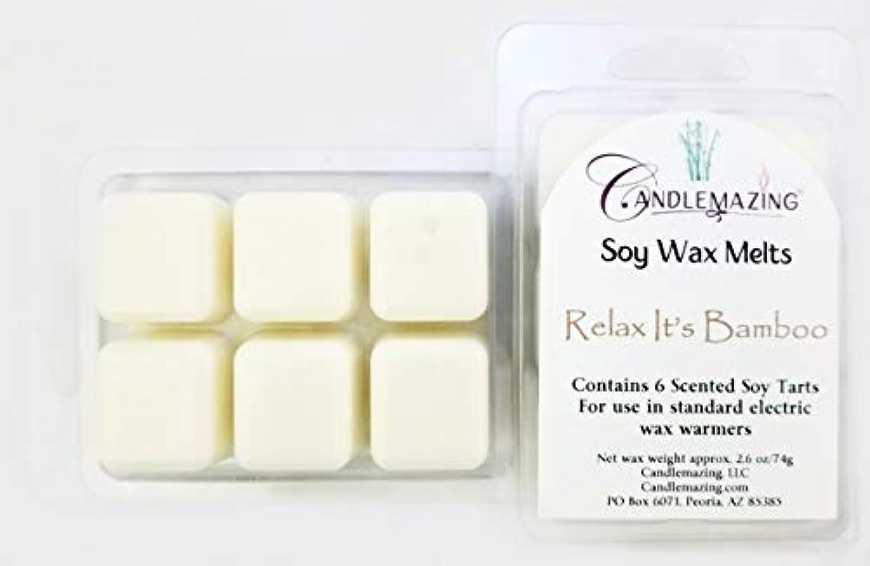 勝利ぴかぴか分析Candlemazing ソイワックスメルト - リラックスできる竹 絶妙な香り、環境に優しい天然大豆。 6個のキューブ2個セット