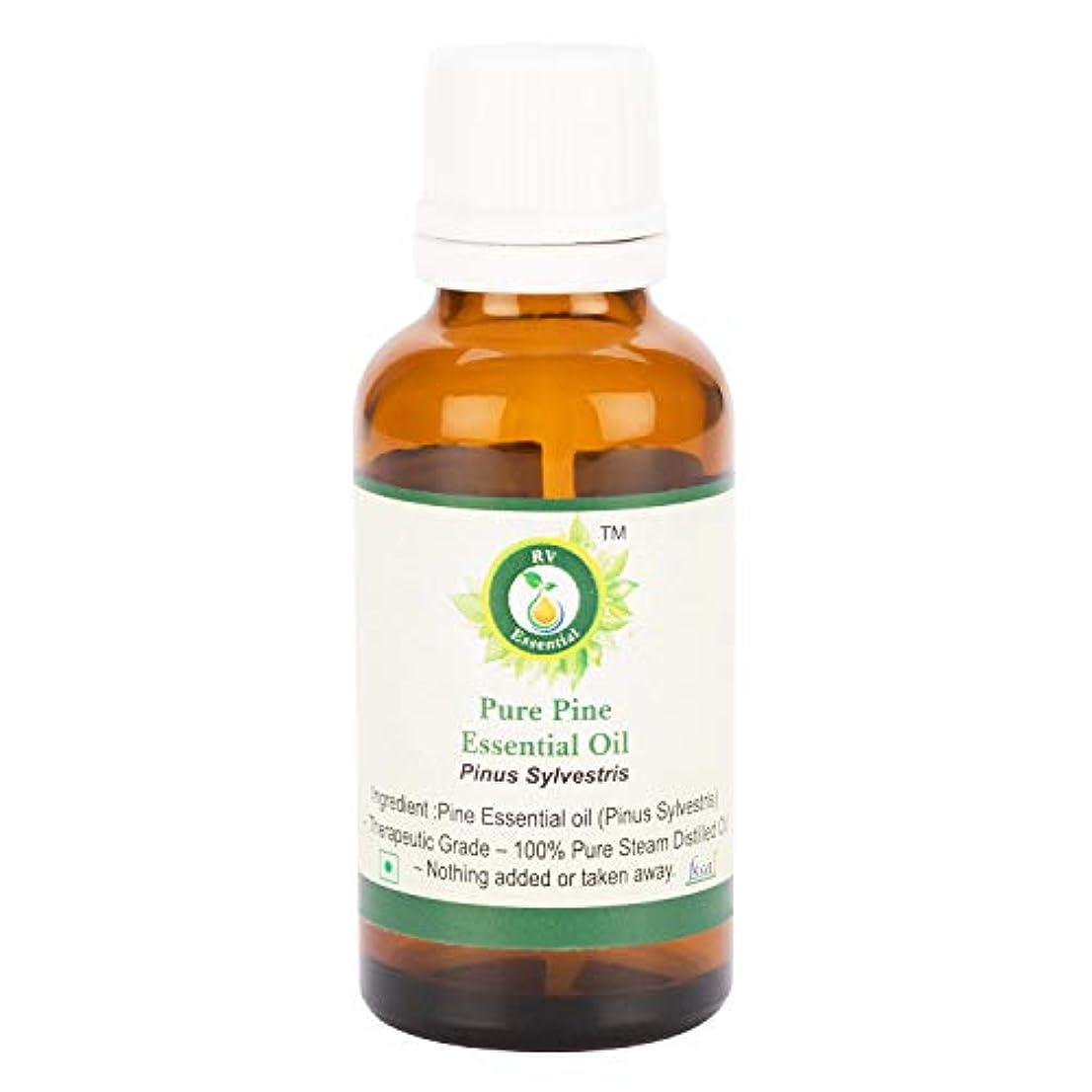 スキニー殉教者確率ピュアパインエッセンシャルオイル300ml (10oz)- Pinus Sylvestris (100%純粋&天然スチームDistilled) Pure Pine Essential Oil