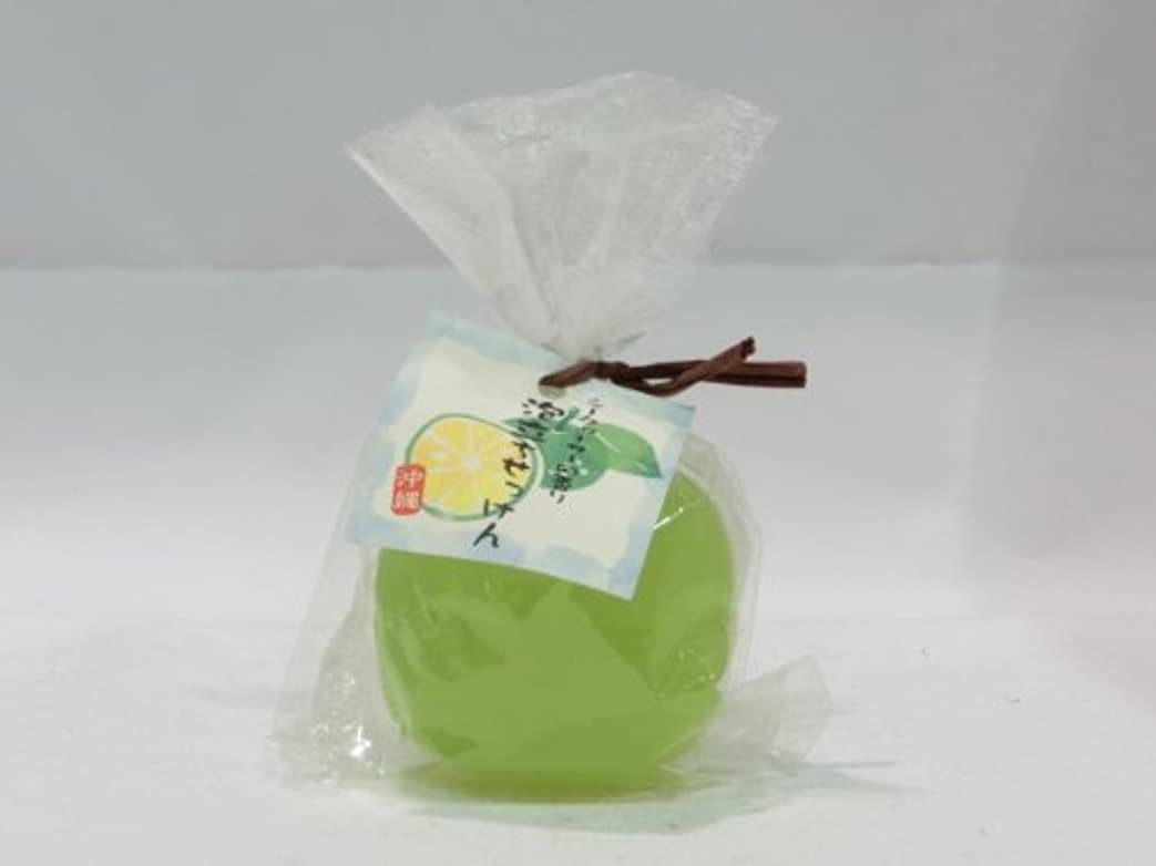 懲らしめ隙間公園【沖縄】 シークヮーサーの香り 泡立ちせっけん (88g)