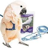 PetSafe (Premier) 鳥用 ハーネス 中型鳥 Mサイズ Cadet Blue 【リード付き】 【ペットセーフ・プレミア・フェザーテザー】