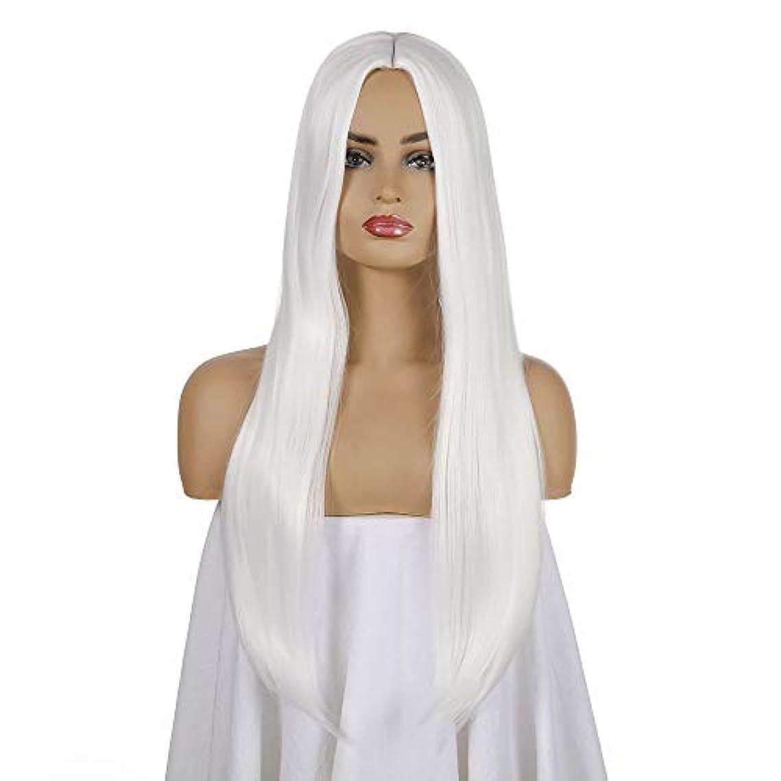 消費地上でノーブル女性用ロングストレートウィッグ26インチ合成コスチュームウィッグハロウィンコスプレアニメパーティーウィッグ(ウィッグキャップ付き)、ホワイト