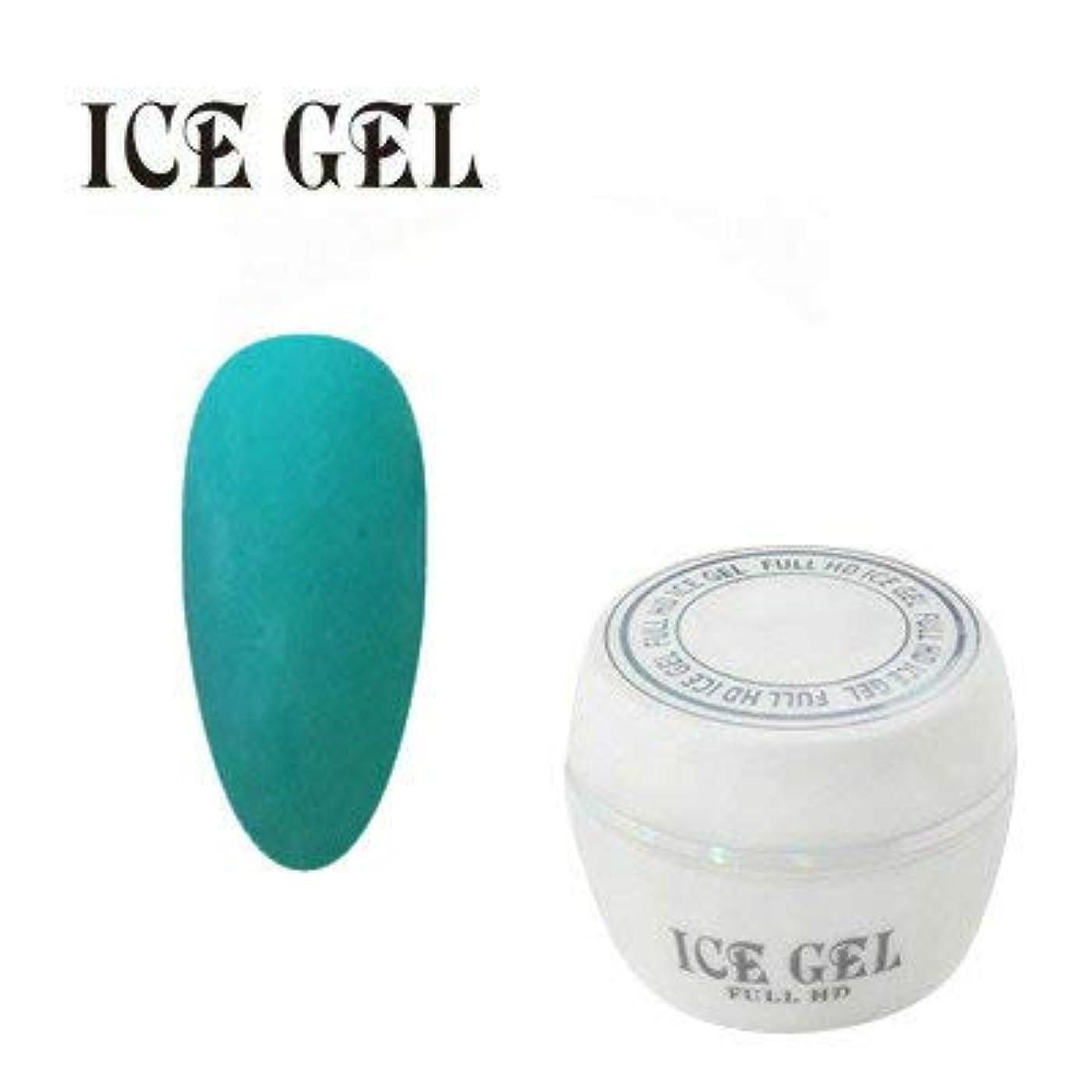 洗剤本質的にの量アイスジェル カラージェル COLOR TRICK CT-627 3g