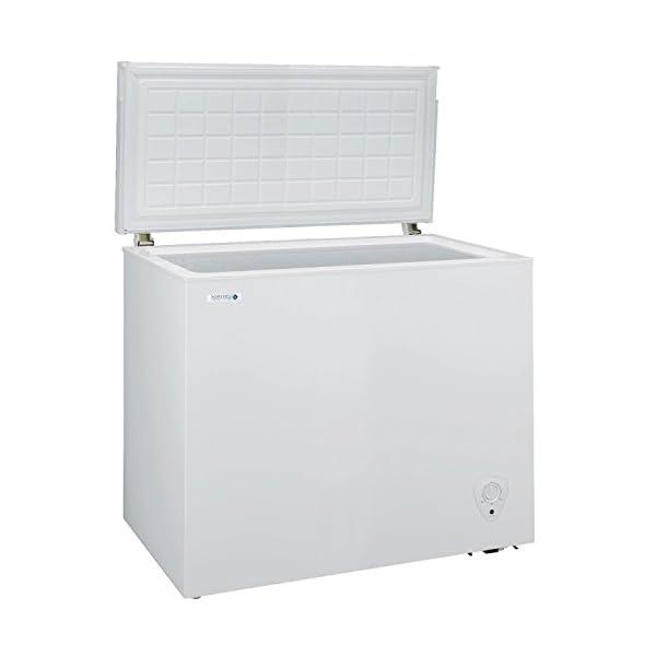 NORFROST ノンフロン冷凍庫 チェストフリ...の商品画像