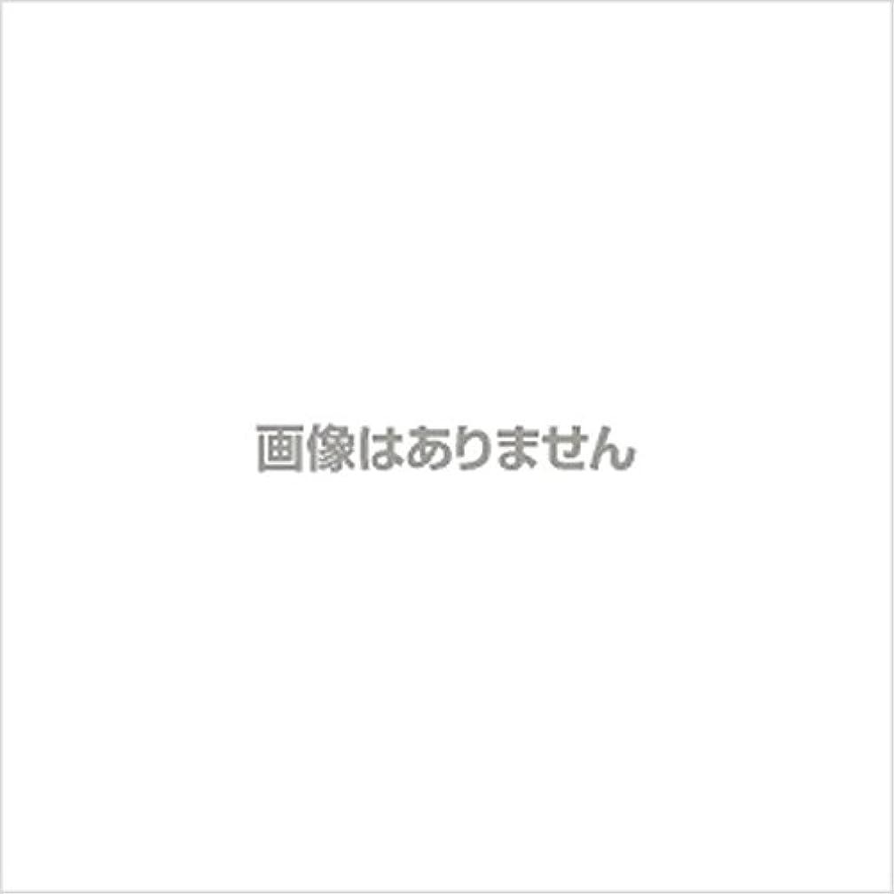 再発する少し避けられない【新発売】EBUKEA エブケアNO1004 プラスチックグローブ(パウダーフリー?粉なし)Sサイズ 100枚入(極薄?半透明)