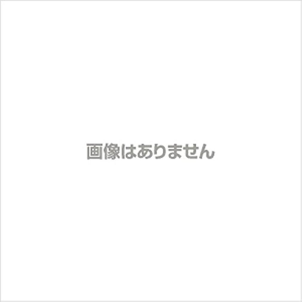 ちょうつがいショット冗長ニュージャスト ヘルパーグローブ L(500枚入) 【商品コード】4010500