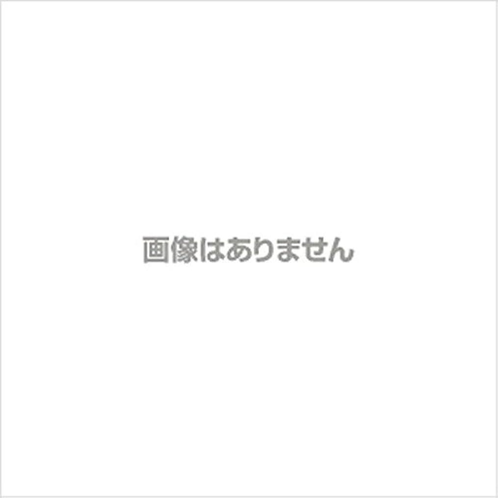 デコレーション砂利ループ【新発売】EBUKEA エブケアNO1002 プラスチックグローブ(粉付)Mサイズ 100枚入(極薄?半透明)