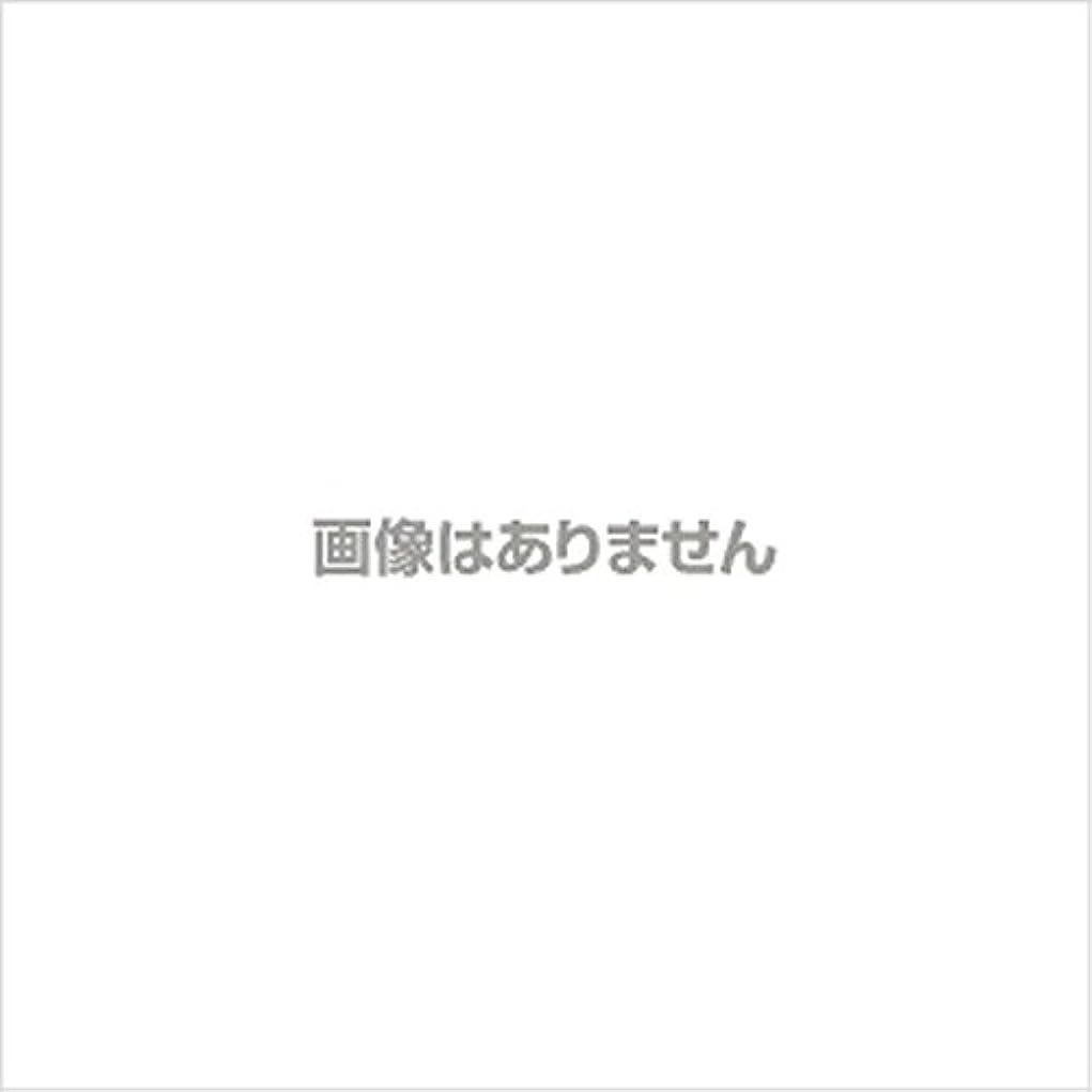 つまらないナイロン知覚的【新発売】EBUKEA エブケアNO1002 プラスチックグローブ(粉付)Mサイズ 100枚入(極薄?半透明)