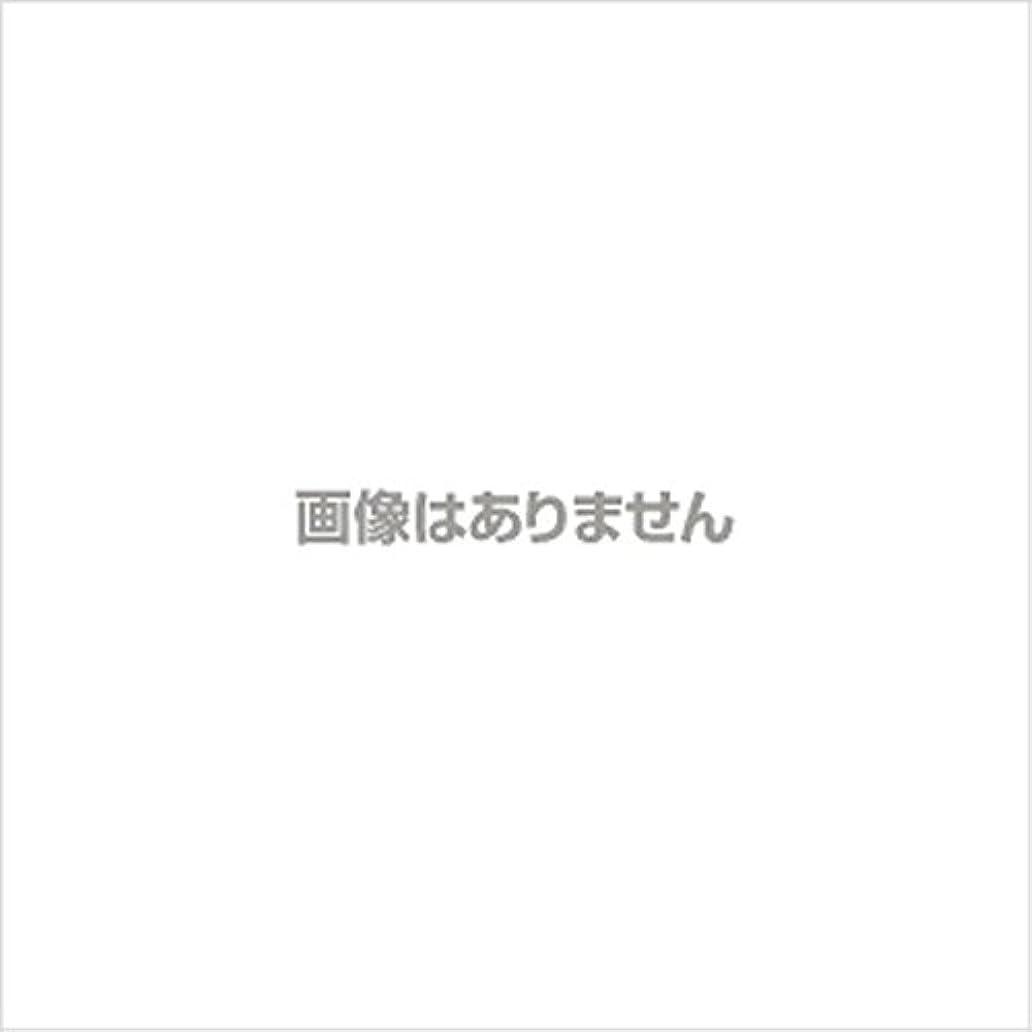 拍手する奇跡庭園ニュージャスト ヘルパーグローブ L(500枚入) 【商品コード】4010500