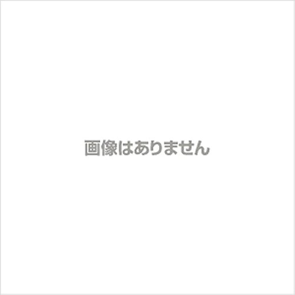 反応する敬礼家庭教師【新発売】EBUKEA エブケアNO1002 プラスチックグローブ(粉付)Mサイズ 100枚入(極薄?半透明)