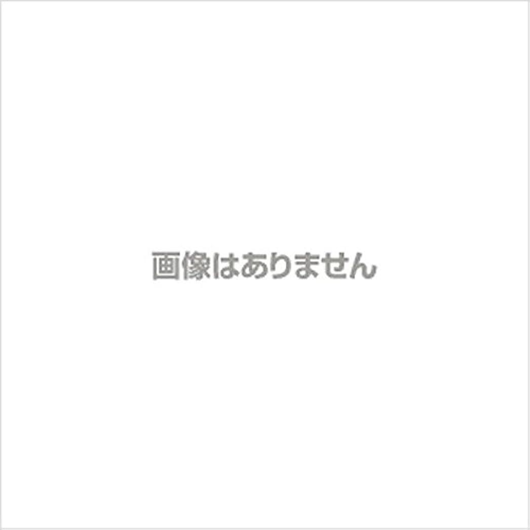 シャベル運賃薬剤師新発売】EBUKEA エブケアNO1004 プラスチックグローブ(パウダーフリー?粉なし)Mサイズ 100枚入(極薄?半透明)