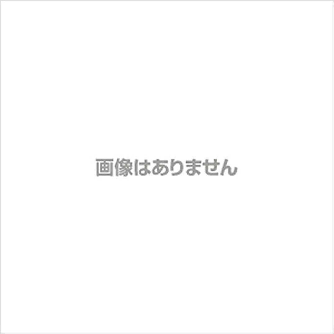 秘書スキャンダラス美徳ニュージャスト ヘルパーグローブ L(500枚入) 【商品コード】4010500