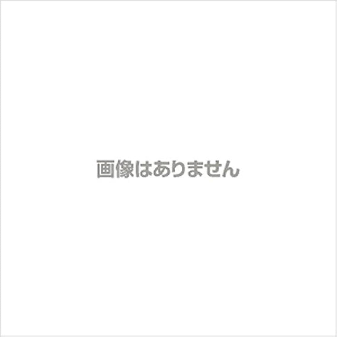 脅迫蜜スペース新発売】EBUKEA エブケアNO1004 プラスチックグローブ(パウダーフリー?粉なし)Mサイズ 100枚入(極薄?半透明)
