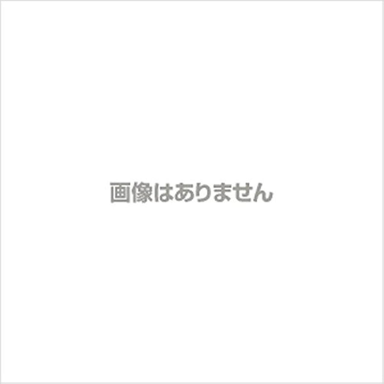 理想的雑草スロットプラスチックグローブNO.3000 S