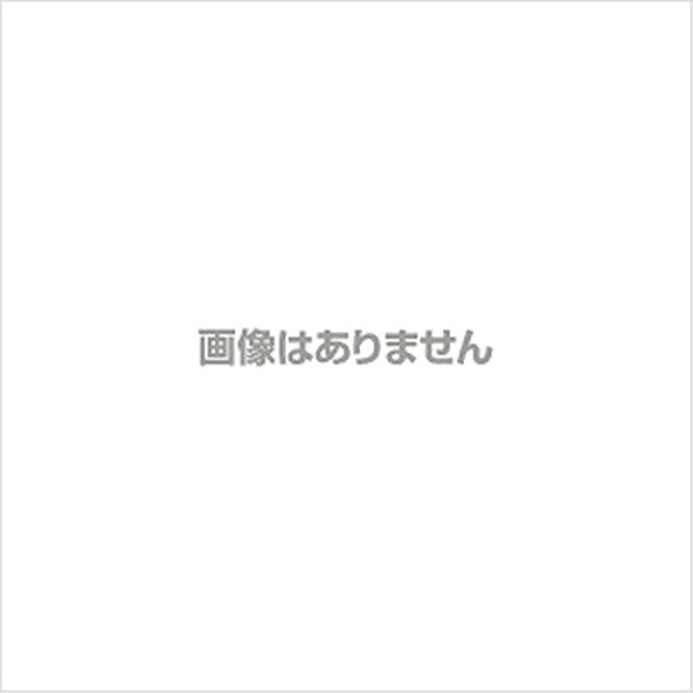試用阻害する上院【新発売】EBUKEA エブケアNO1002 プラスチックグローブ(粉付)Mサイズ 100枚入(極薄?半透明)
