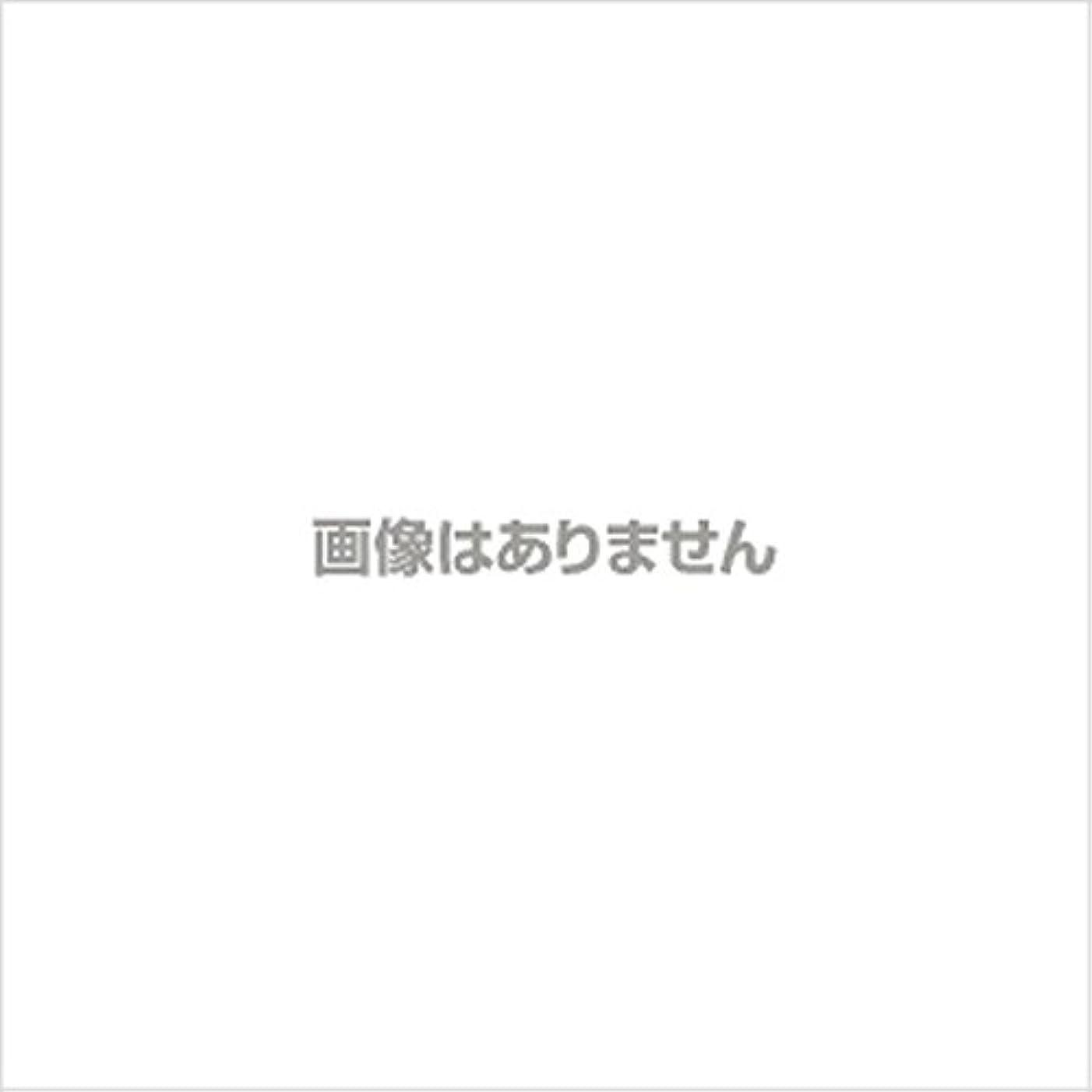 ペニー魅力的であることへのアピール時間厳守ニュージャスト ヘルパーグローブ L(500枚入) 【商品コード】4010500