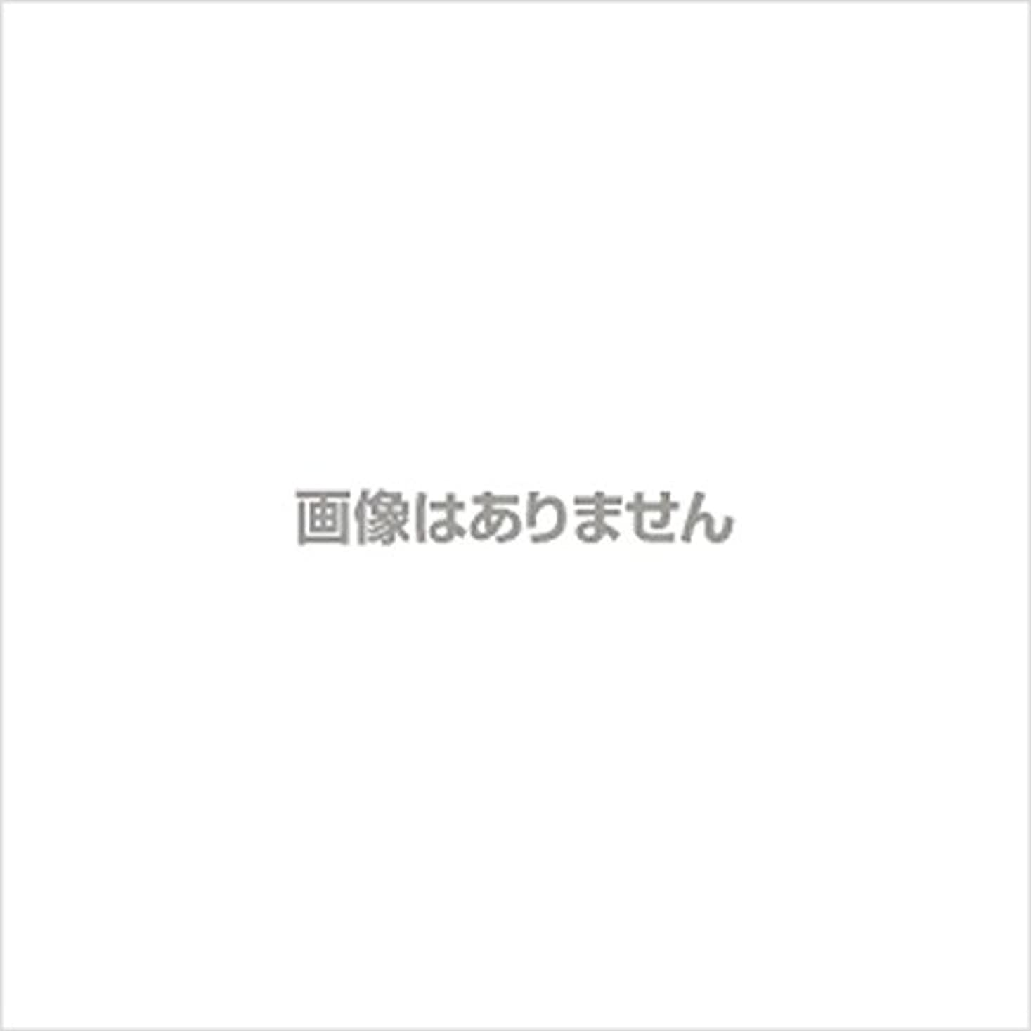 コミュニケーション証言外科医【新発売】EBUKEA エブケアNO1002 プラスチックグローブ(粉付)Mサイズ 100枚入(極薄?半透明)