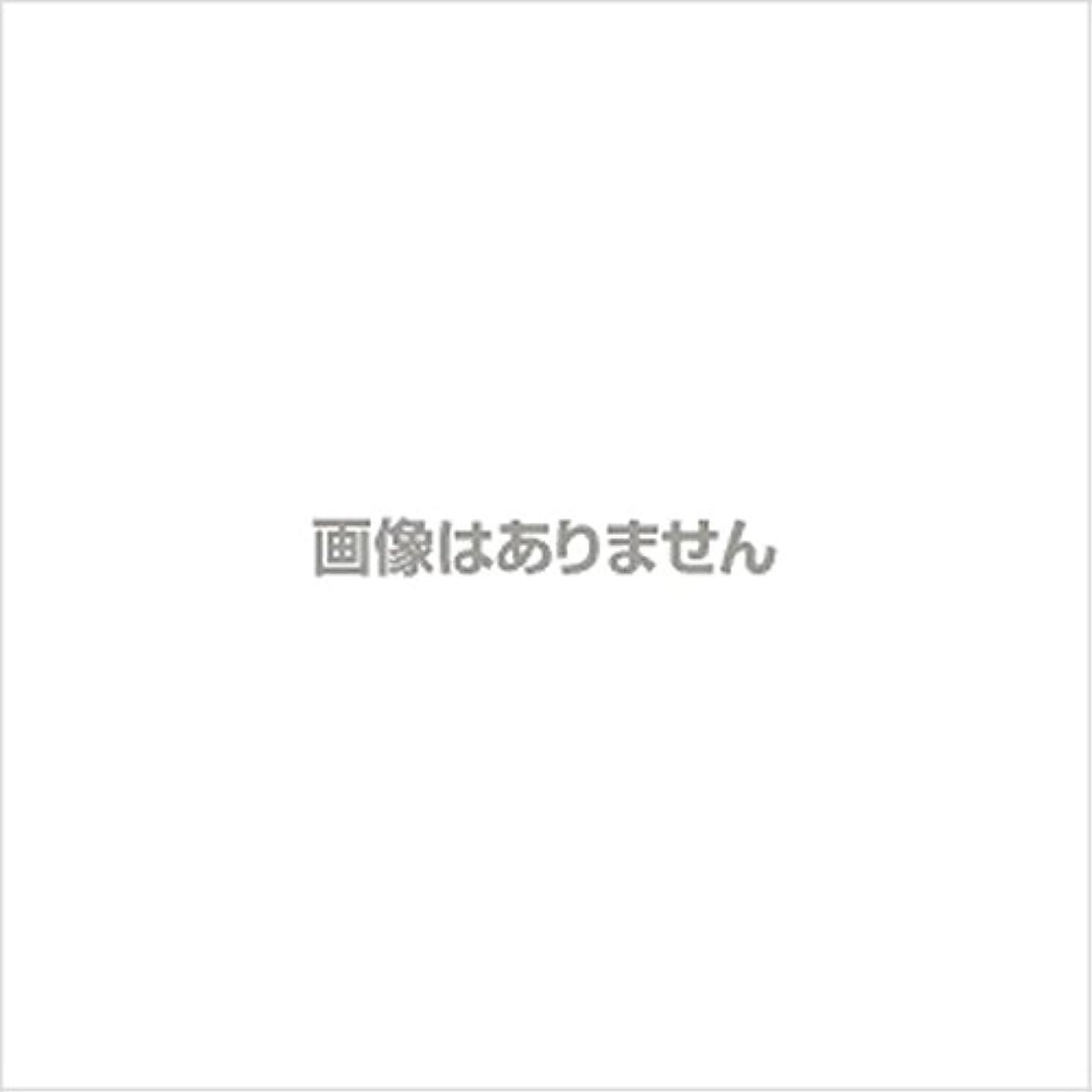 【新発売】EBUKEA エブケアNO1002 プラスチックグローブ(粉付)Mサイズ 100枚入(極薄?半透明)