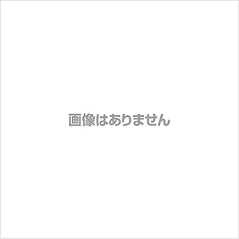 内側気になるドル新発売】EBUKEA エブケアNO1004 プラスチックグローブ(パウダーフリー?粉なし)Mサイズ 100枚入(極薄?半透明)