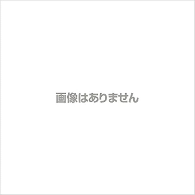 消毒剤電気技師受ける【新発売】EBUKEA エブケアNO1002 プラスチックグローブ(粉付)Mサイズ 100枚入(極薄?半透明)