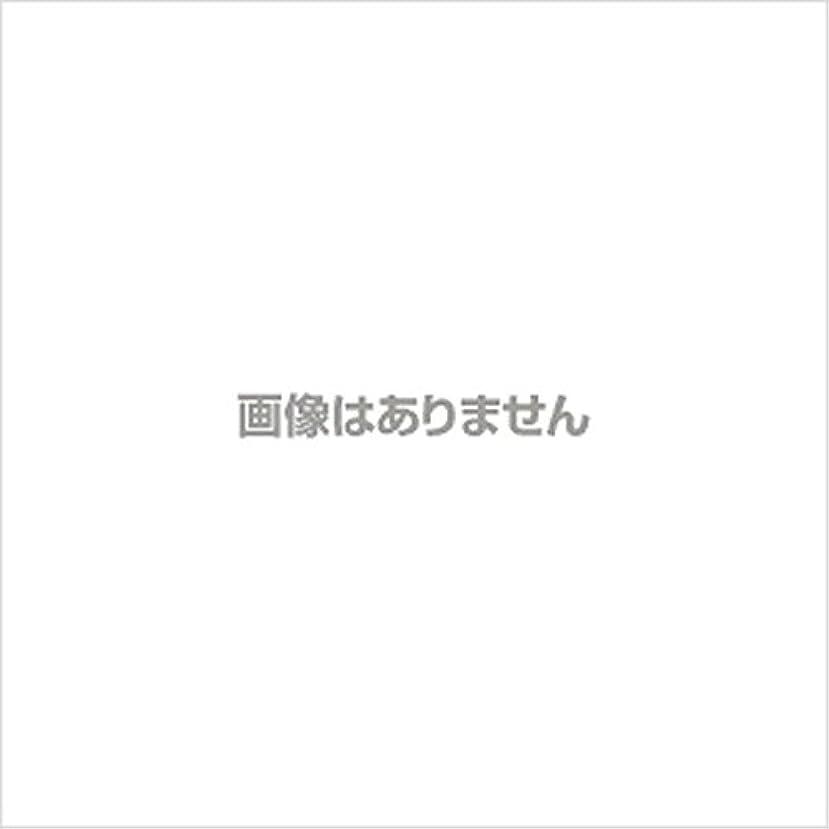 懸念近代化する混乱させる【新発売】EBUKEA エブケアNO1002 プラスチックグローブ(粉付)Mサイズ 100枚入(極薄?半透明)